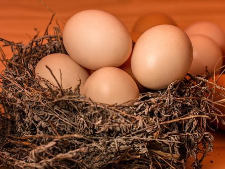 En cocotte, mollet, poché... L'œuf fait son effet !