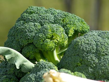 Astuces pour faire aimer les brocolis à vos enfants !