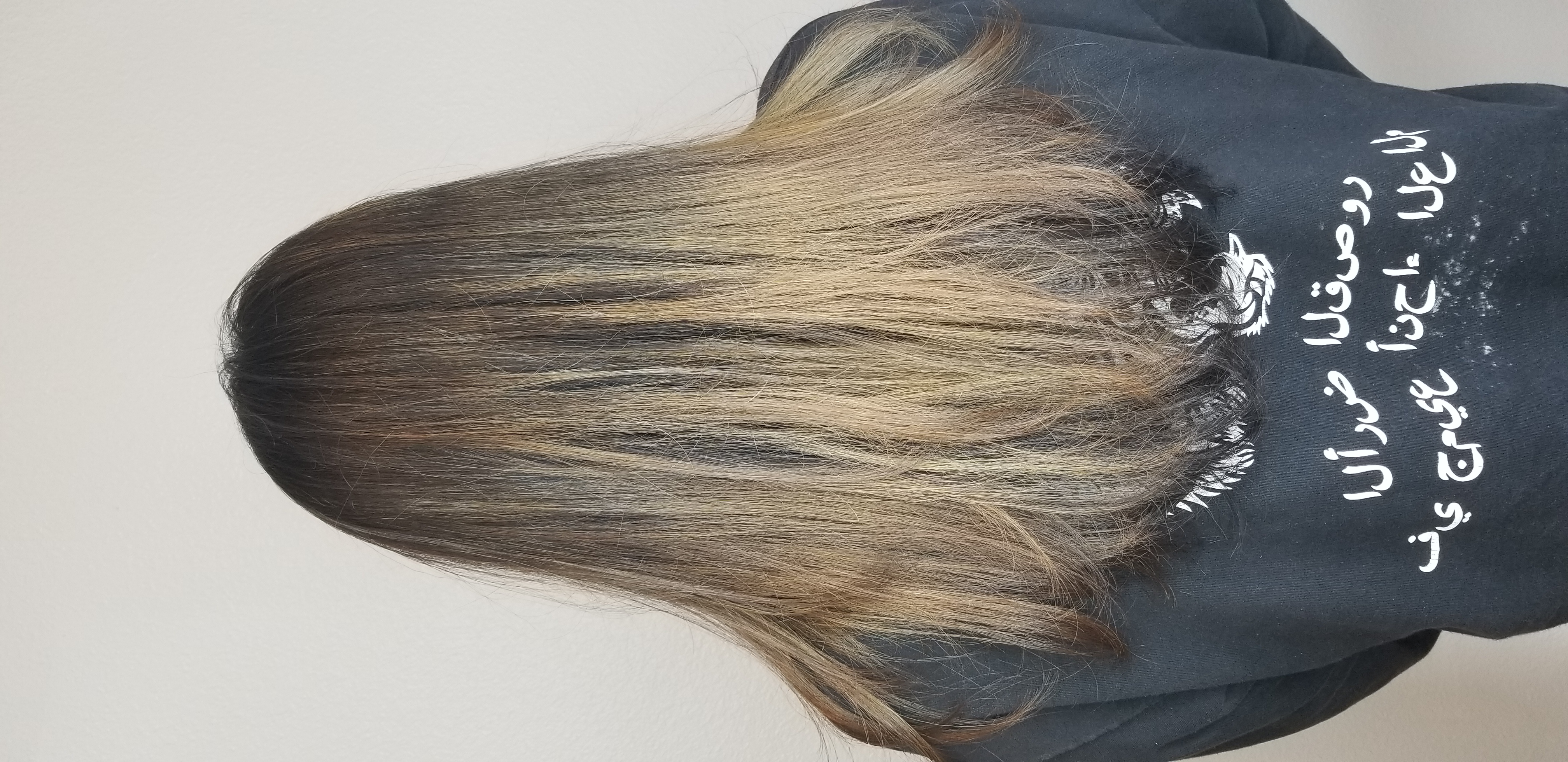 Partial Balayage & Long Layer Cut