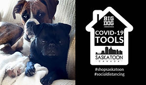 COVID-19 Tools Saskatoon Social Media Fi