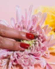 woman's fingertips on flower.jpg