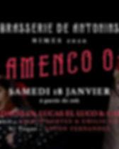 flamenco nimes.jpg