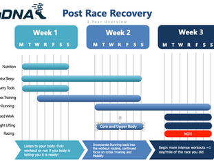 Endurance Race Recovery