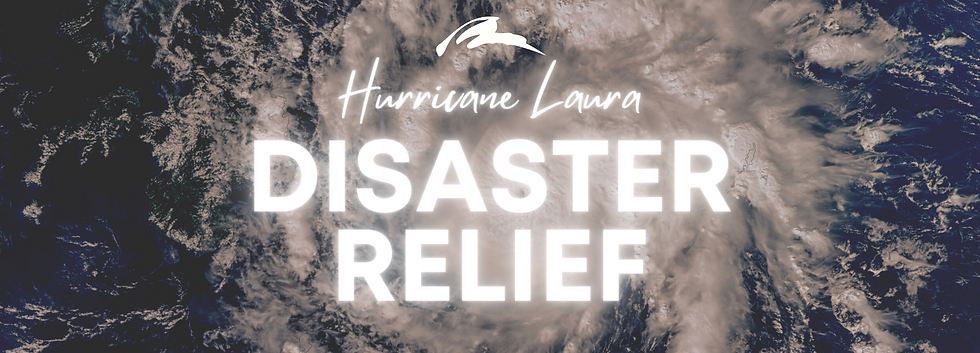 Disaster Relief - App Banner.png