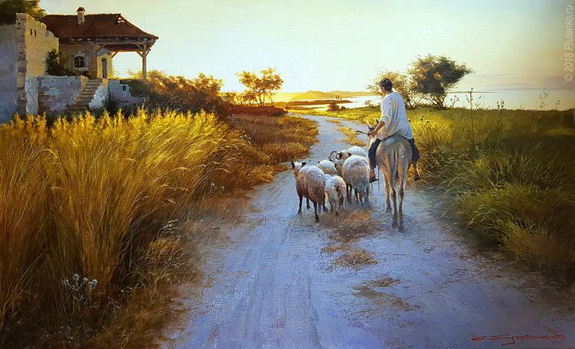The morning shepherd