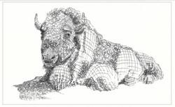 שאול חיות 1