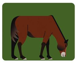 נריה סוס