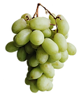 TableGrapes_edited.png