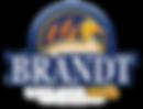 BrandtWhiteLogo-01.png