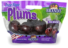 plum-web-bag-01.png