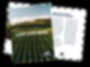 BrochureMockup-01.png