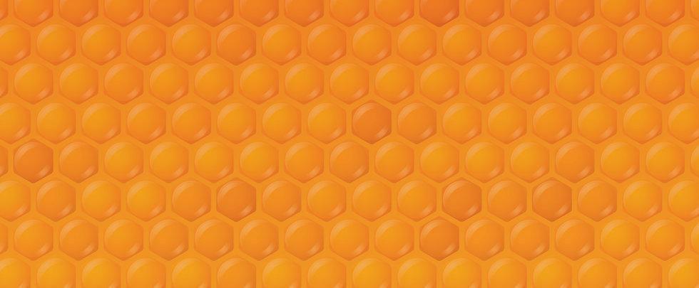 Honeys-Web-compresdsed.jpg