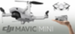 Mavic Mini.webp