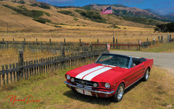 65 Mustang Ranch Shot