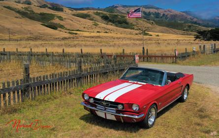 65 Mustang Ranch Shot