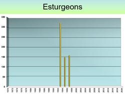ESTURGEONS