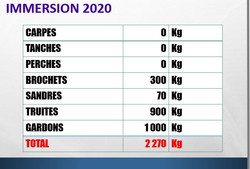 IMMERSIONS 2020
