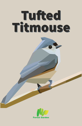 Tufted Titmouse Vector