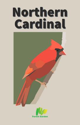 Northern Cardinal Vector
