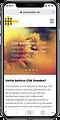 iphone_webb_responsiv.png