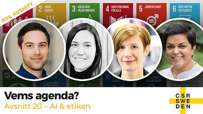 VemsAgenda_avs_20_CSR_Sweden.jpg