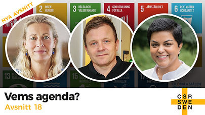 VemsAgenda_avs18_CSR_Sweden.jpg