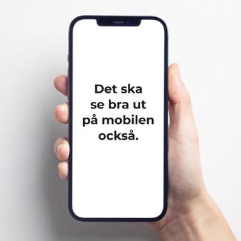 iphone hand.jpg