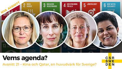 VemsAgenda_avs_21_CSR_Sweden.jpg