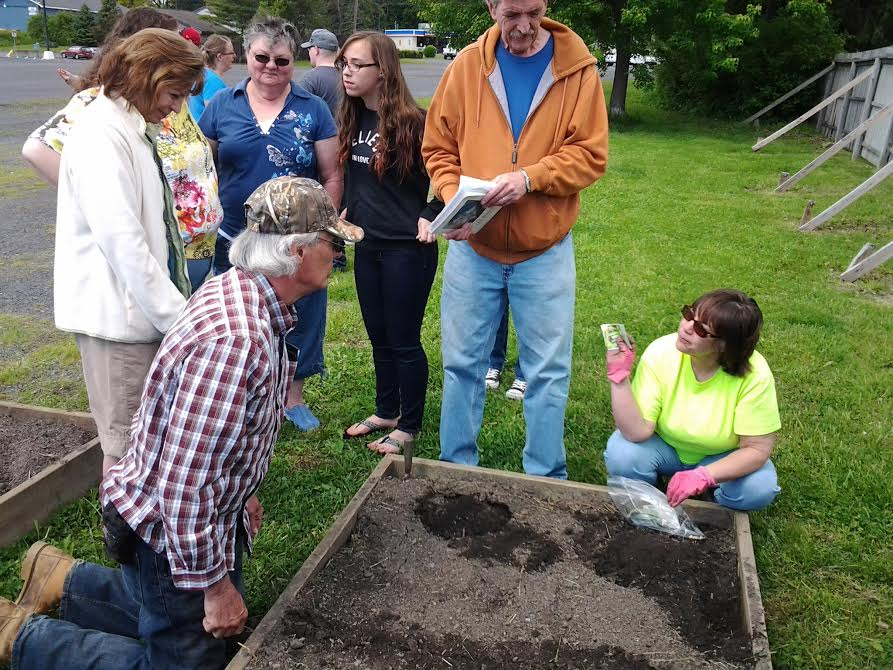 First day in the community garden