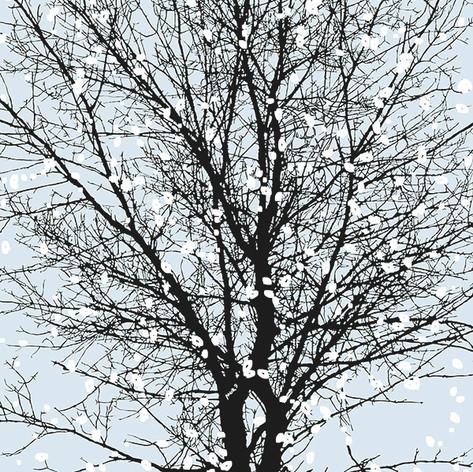 Tree Face1April 099 TnT3_002 crop1_001sn