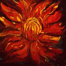 fireflower.jpg