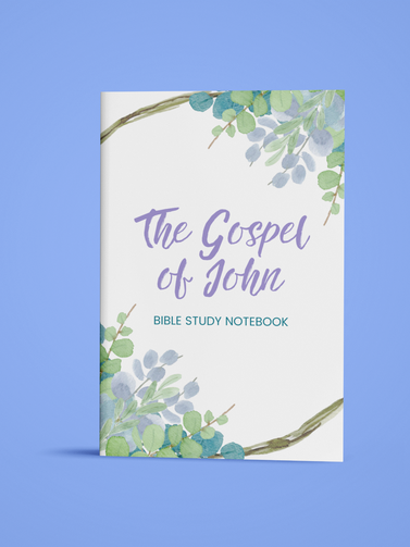 The Gospel of John - Bible Study Notebook