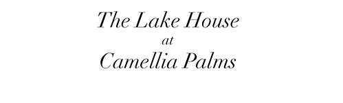 camellia palms_website cover.png