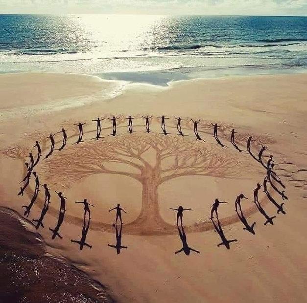 arbre sable.jpg