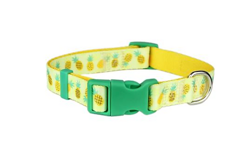 Pineapple Collar \ Leash