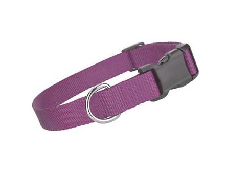 Lilac Collar \ Leash