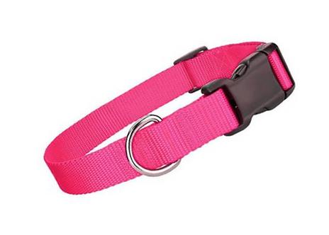 Pink Collar \ Leash