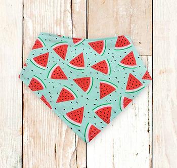 Watermelon Dog Bandana