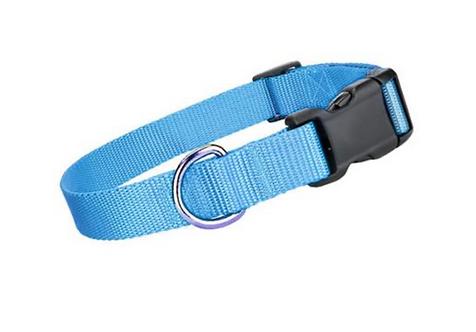 Blue Collar \ Leash