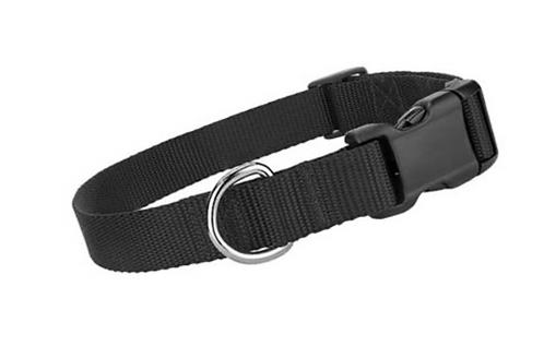Black Collar \ Leash