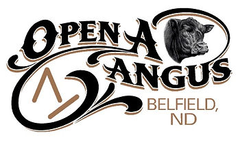 Open A Logo.jpg