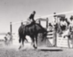 Leonard Nelson on Gneral Custer 001.jpg