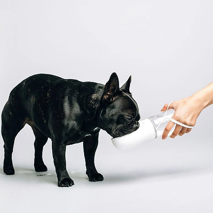 Thirsty Dog Bottle