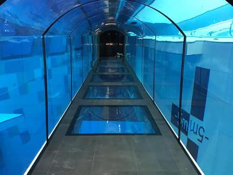 Nasz tunel i okna w materiale BBC
