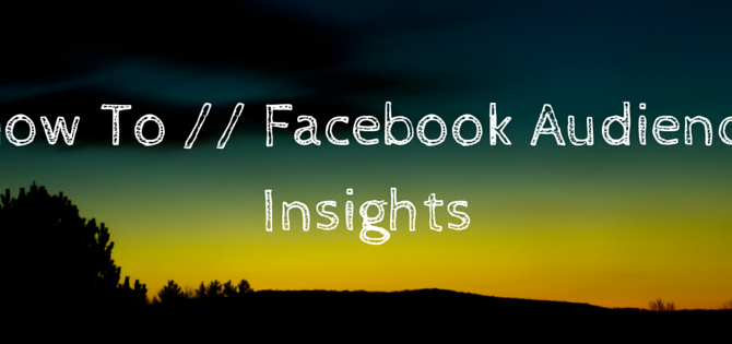 How To: Facebook Audience Insights