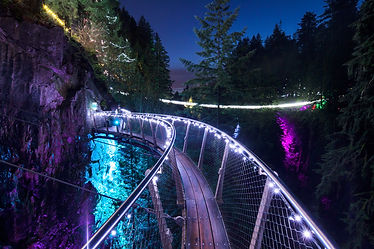 Capilano Canyon Lights (1).jpg