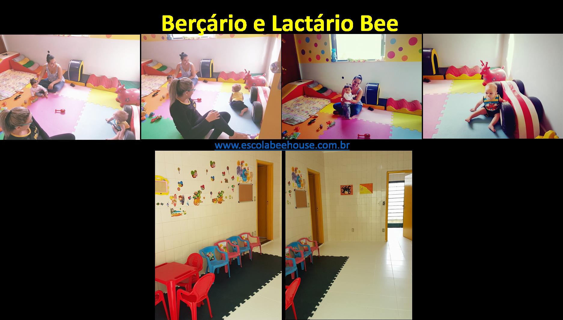 berçario_e_lactario_bee