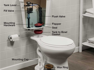 Spring Maintenance Tip - Toilet Flappers
