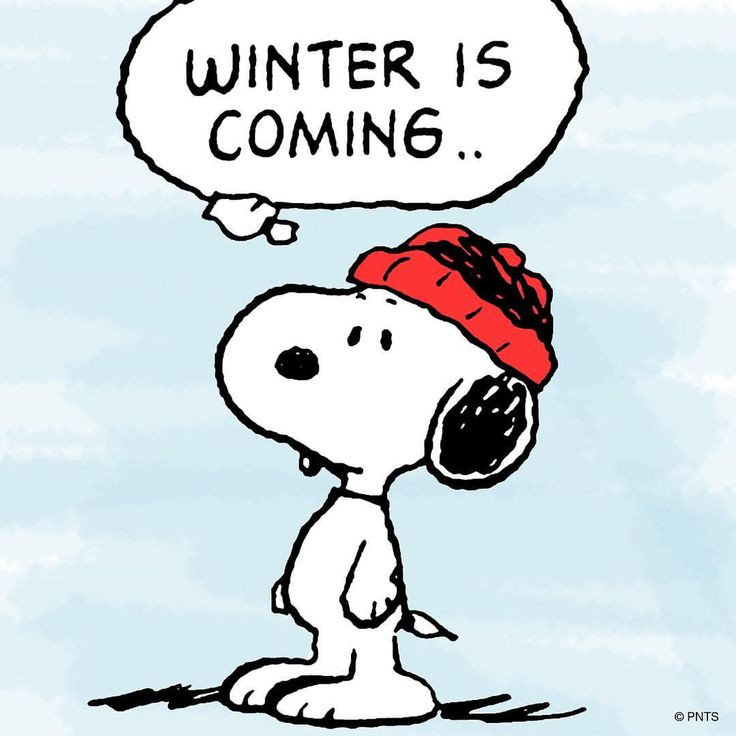 Winter is coming snoopy comic