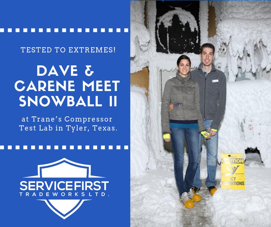 Dave & Carene Meet Snowball II